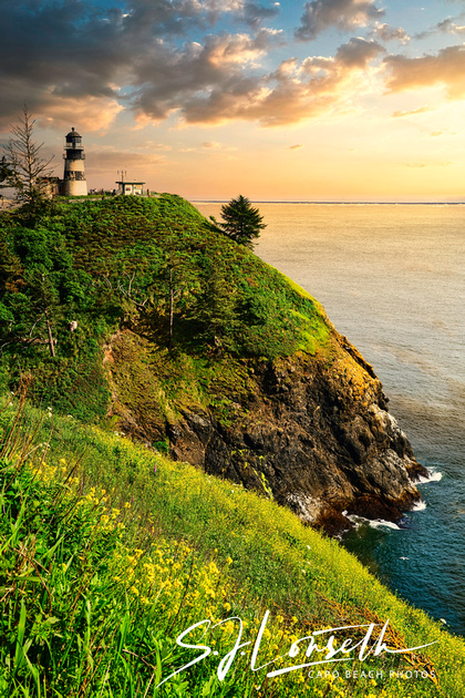 CapeDisappointment_LookingEast_Small