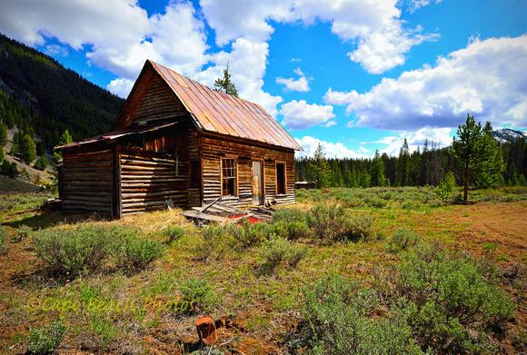 House at Custer