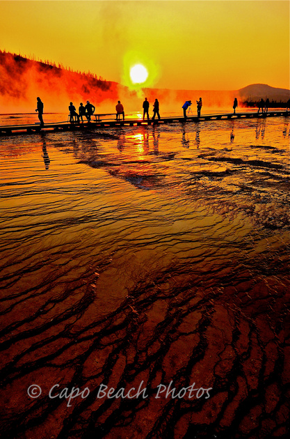 Beings At Grand Prismatic Spring
